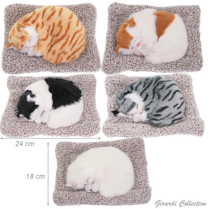 Gattino In Peluche Con Cuscino